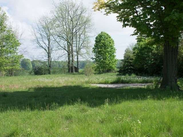Vacant Land at 661 George St, Central Elgin, Ontario. Image 2