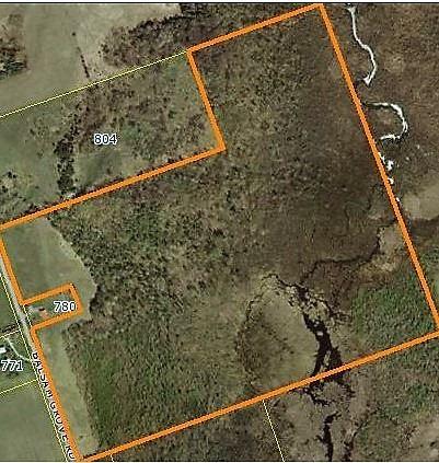 Vacant Land at 0 Balsam Grove Rd, Kawartha Lakes, Ontario. Image 1