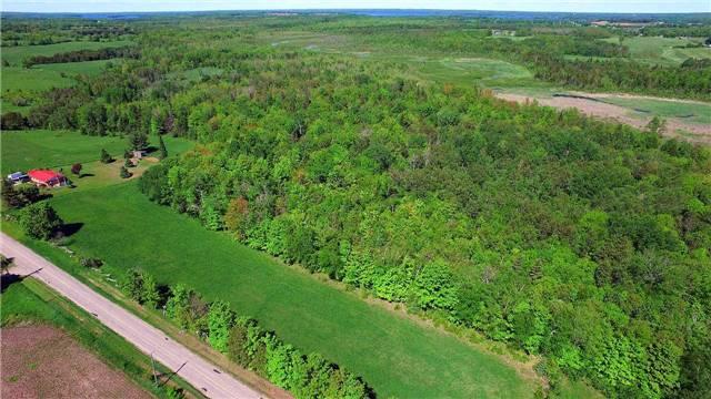 Vacant Land at 0 Balsam Grove Rd, Kawartha Lakes, Ontario. Image 2
