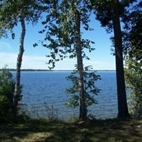 Vacant Land at 37 Rosedale Tr, Kawartha Lakes, Ontario. Image 13