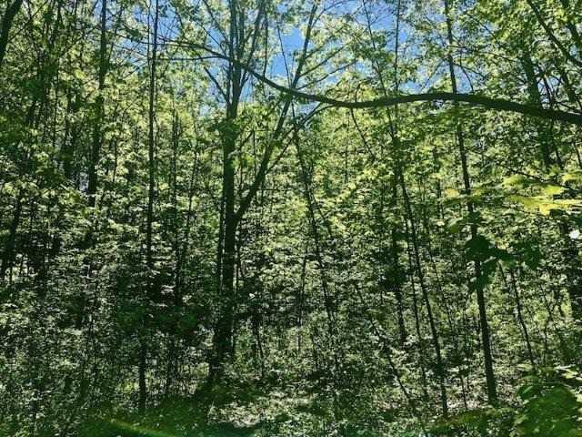 Vacant Land at 3180 Tallman Dr, Lincoln, Ontario. Image 7