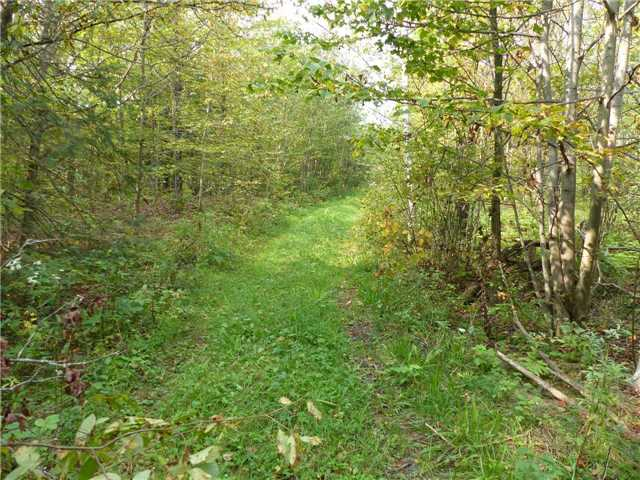 Vacant Land at 0 Part Lot 17 Con 5 Rd, Seguin, Ontario. Image 12