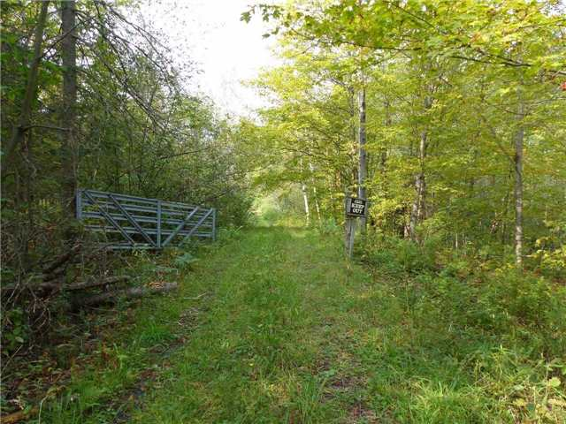 Vacant Land at 0 Part Lot 17 Con 5 Rd, Seguin, Ontario. Image 14