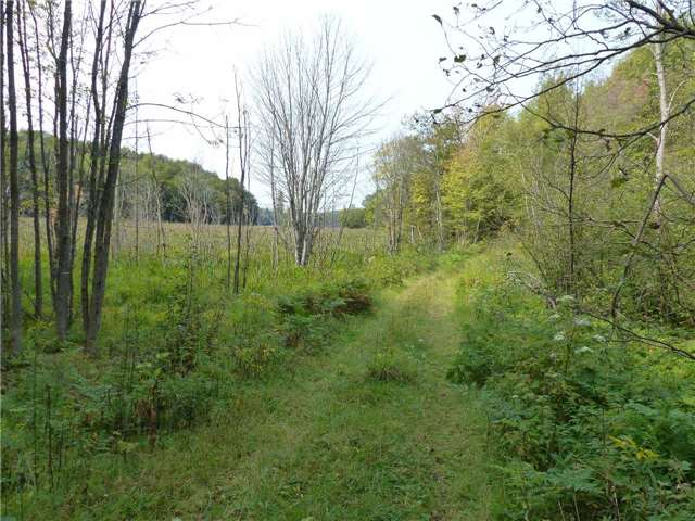 Vacant Land at 0 Part Lot 17 Con 5 Rd, Seguin, Ontario. Image 15