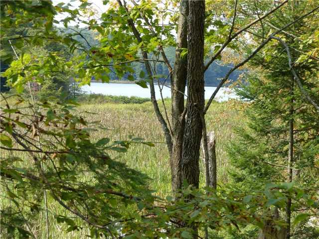 Vacant Land at 0 Part Lot 17 Con 5 Rd, Seguin, Ontario. Image 16