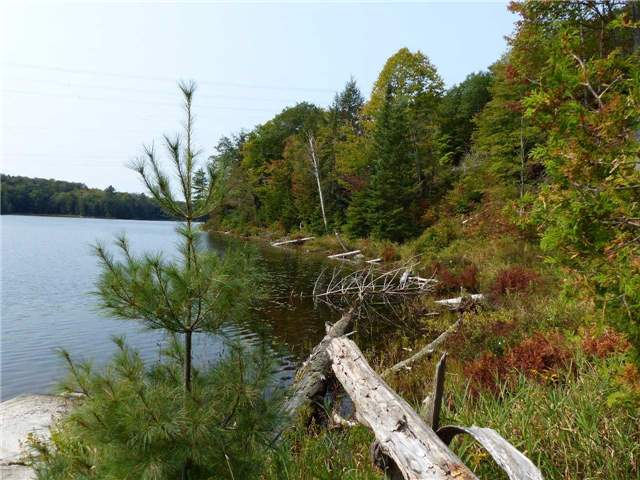 Vacant Land at 0 Part Lot 17 Con 5 Rd, Seguin, Ontario. Image 4