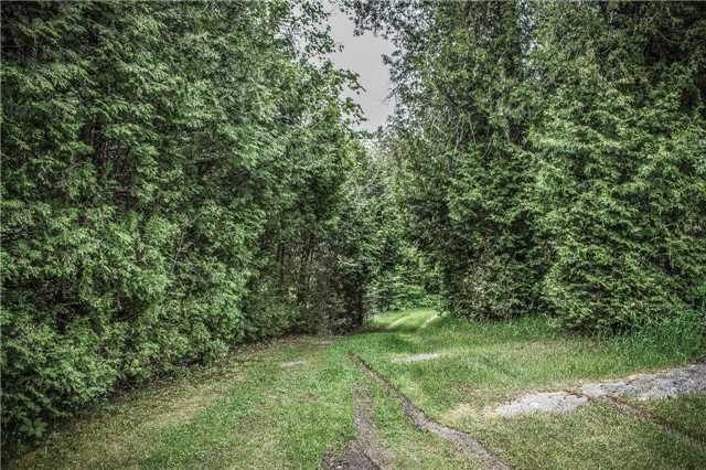 Detached at 87 Bells Rd, Nipissing Remote Area, Ontario. Image 8