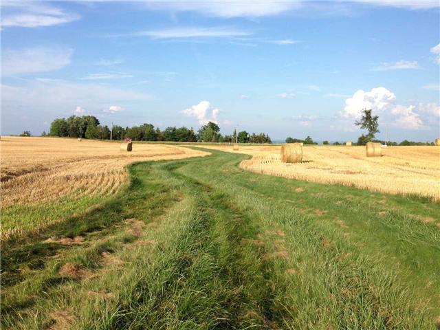 Vacant Land at 936284 Airport Road Rd, Mulmur, Ontario. Image 16