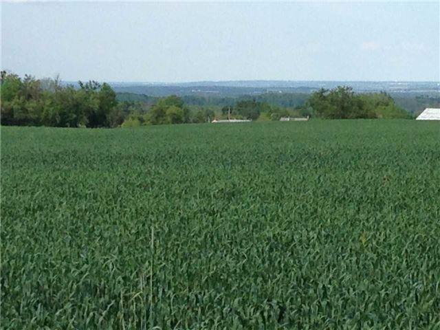 Vacant Land at 936284 Airport Road Rd, Mulmur, Ontario. Image 19