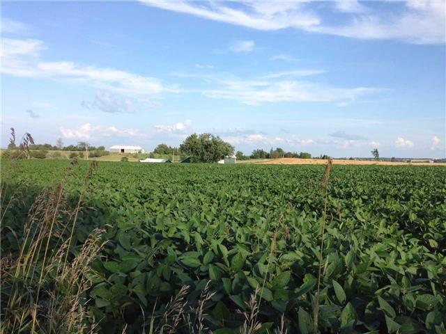 Vacant Land at 936284 Airport Road Rd, Mulmur, Ontario. Image 8