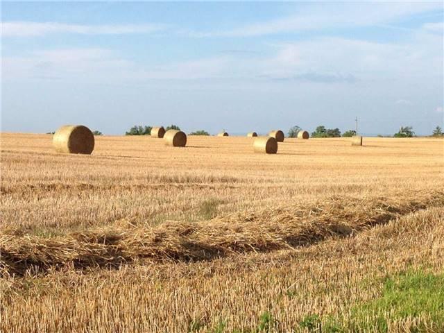 Vacant Land at 936284 Airport Road Rd, Mulmur, Ontario. Image 9