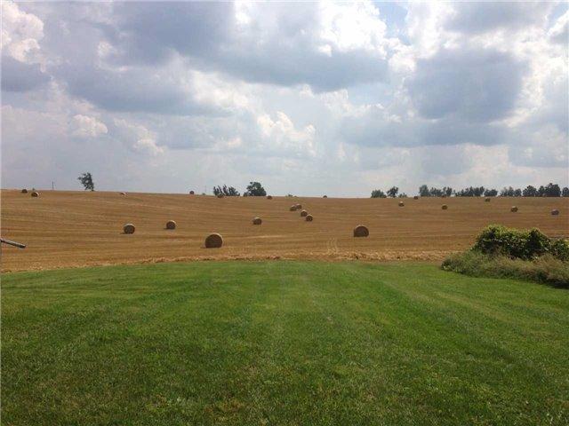 Vacant Land at 936234 Airport Road Rd, Mulmur, Ontario. Image 16