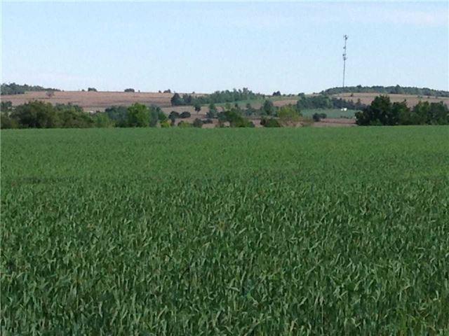 Vacant Land at 936234 Airport Road Rd, Mulmur, Ontario. Image 17