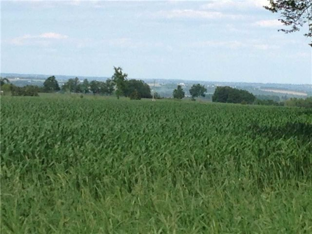 Vacant Land at 936234 Airport Road Rd, Mulmur, Ontario. Image 18