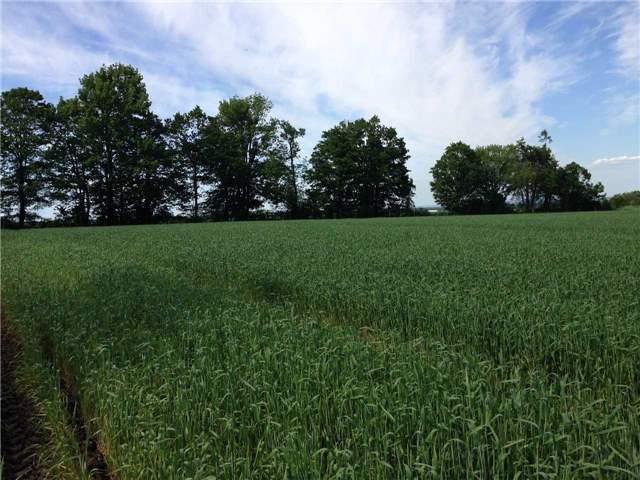 Vacant Land at 936234 Airport Road Rd, Mulmur, Ontario. Image 4