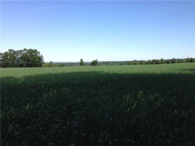 Vacant Land at 936234 Airport Road Rd, Mulmur, Ontario. Image 5