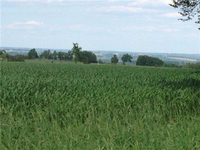 Vacant Land at 936234 Airport Road Rd, Mulmur, Ontario. Image 6