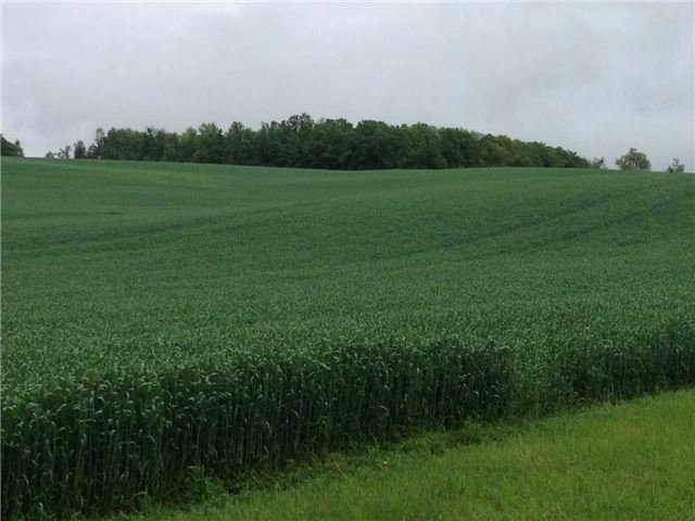 Vacant Land at 936234 Airport Road Rd, Mulmur, Ontario. Image 11
