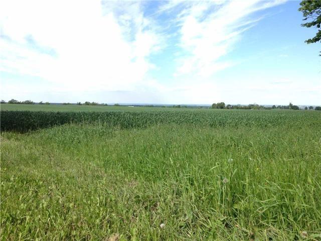 Vacant Land at 936234 Airport Road Rd, Mulmur, Ontario. Image 13