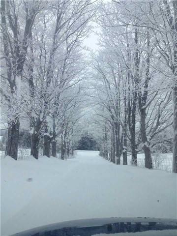 Farm at 429639 8th Line B, Grey Highlands, Ontario. Image 8