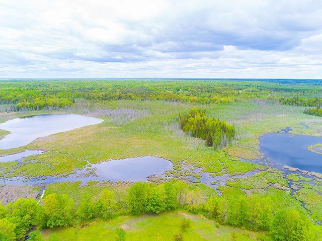 Vacant Land at N/A Flynn Rd, Tweed, Ontario. Image 2