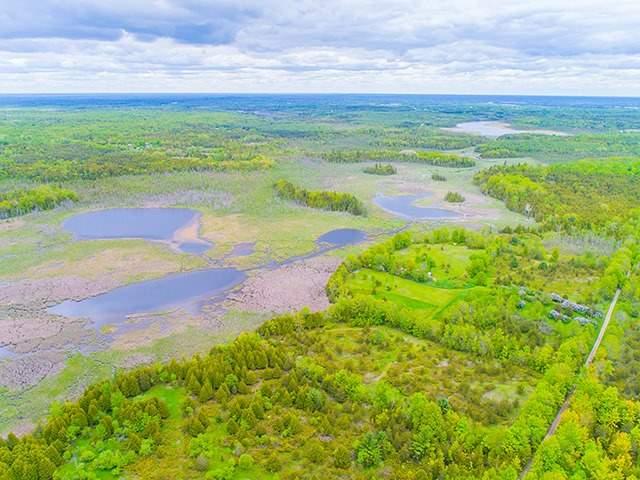 Vacant Land at N/A Flynn Rd, Tweed, Ontario. Image 4