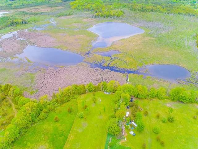 Vacant Land at N/A Flynn Rd, Tweed, Ontario. Image 5