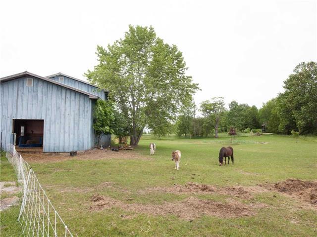 Farm at 668 Sandringham Rd, Kawartha Lakes, Ontario. Image 15