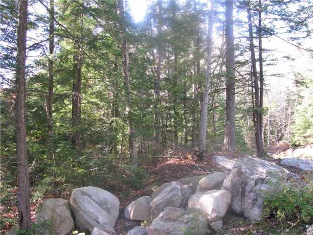 Vacant Land at 1318 Matthiasville Rd, Bracebridge, Ontario. Image 15