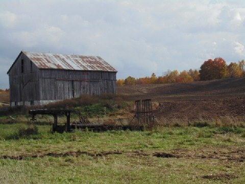 Farm at 938631 Airport Rd, Mulmur, Ontario. Image 2
