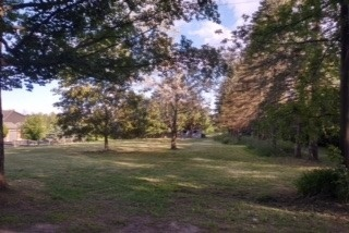 Vacant Land at 2029 Morrison Rd, North Dumfries, Ontario. Image 7