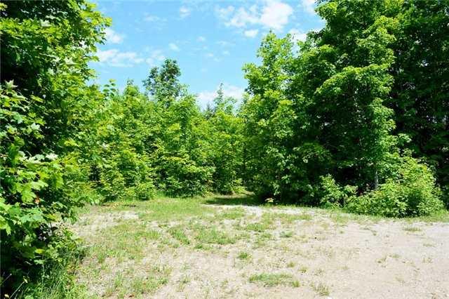 Vacant Land at 720624 20 Sdrd, Chatsworth, Ontario. Image 6