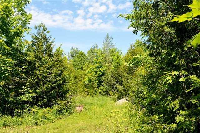 Vacant Land at 720624 20 Sdrd, Chatsworth, Ontario. Image 9