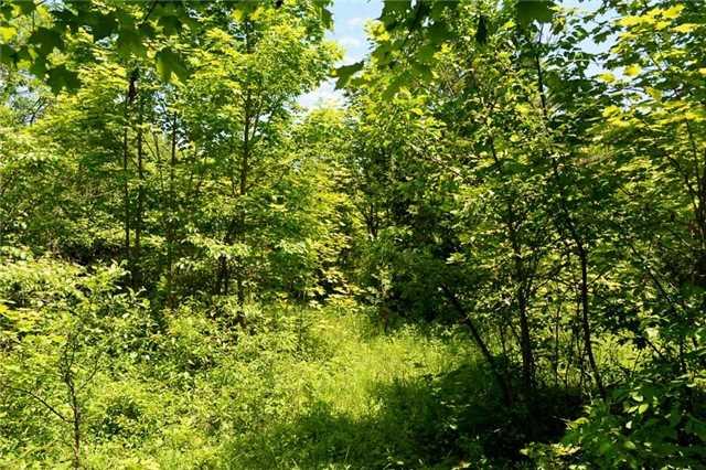 Vacant Land at 720624 20 Sdrd, Chatsworth, Ontario. Image 10