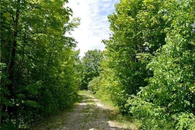 Vacant Land at 720624 20 Sdrd, Chatsworth, Ontario. Image 11