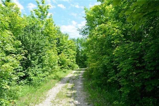 Vacant Land at 720624 20 Sdrd, Chatsworth, Ontario. Image 2