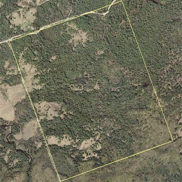 Vacant Land at 0 Dutch Line Rd, Galway-Cavendish and Harvey, Ontario. Image 1