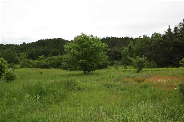 Vacant Land at 416 Sunnyridge Rd, West Nipissing, Ontario. Image 8