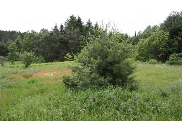 Vacant Land at 416 Sunnyridge Rd, West Nipissing, Ontario. Image 9