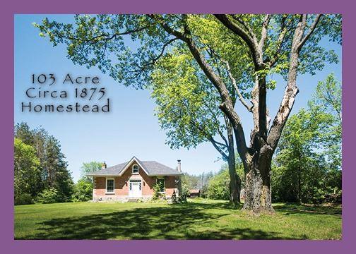 Detached at 185 Meadowview Rd Rd, Kawartha Lakes, Ontario. Image 1