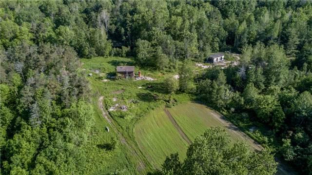 Detached at 341 Monck Rd, Kawartha Lakes, Ontario. Image 7