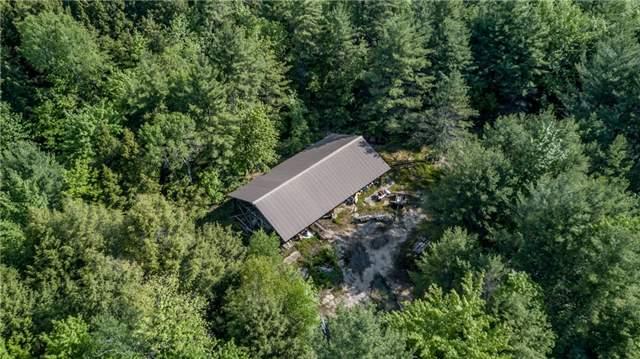 Detached at 341 Monck Rd, Kawartha Lakes, Ontario. Image 8