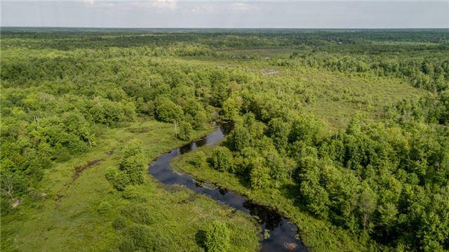 Detached at 341 Monck Rd, Kawartha Lakes, Ontario. Image 11