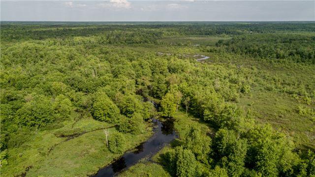 Detached at 341 Monck Rd, Kawartha Lakes, Ontario. Image 13