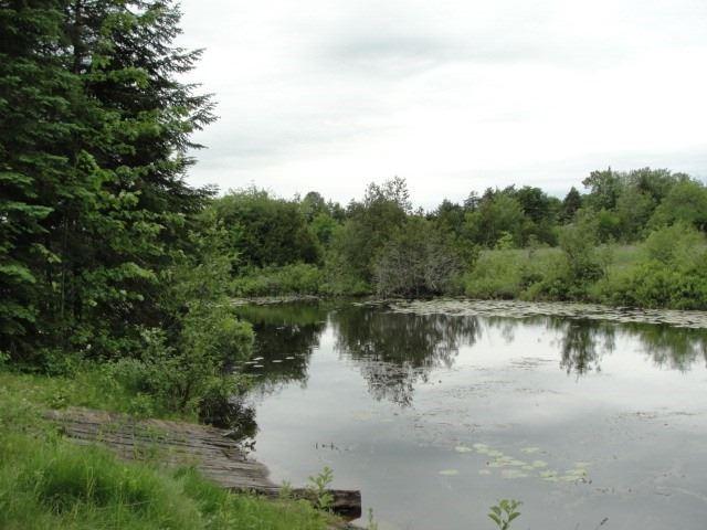 Detached at 7 Sunset Crt N, Kawartha Lakes, Ontario. Image 14