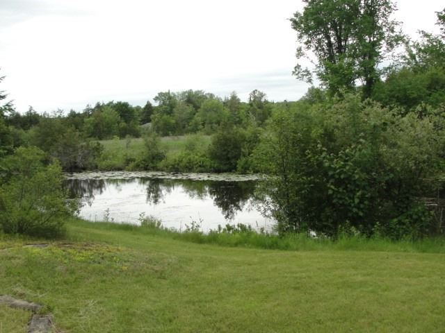 Detached at 7 Sunset Crt N, Kawartha Lakes, Ontario. Image 6