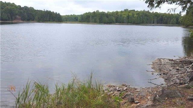Vacant Land at L10 Swaugers Creek Lane, North Frontenac, Ontario. Image 1
