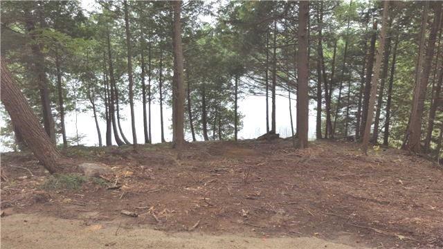Vacant Land at L10 Swaugers Creek Lane, North Frontenac, Ontario. Image 7