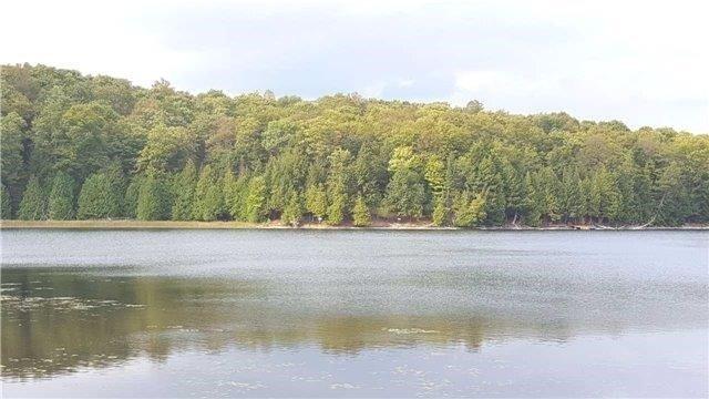 Vacant Land at L10 Swaugers Creek Lane, North Frontenac, Ontario. Image 8