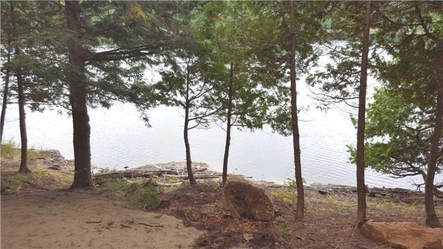 Vacant Land at L10 Swaugers Creek Lane, North Frontenac, Ontario. Image 10